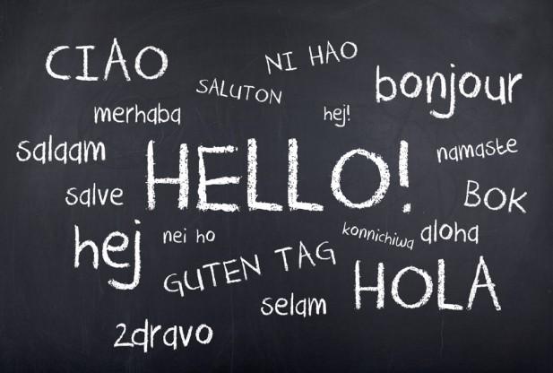 bilingual candidates